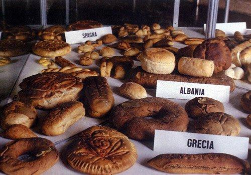 Musei del cibo in Italia: <br>un viaggio nel gusto