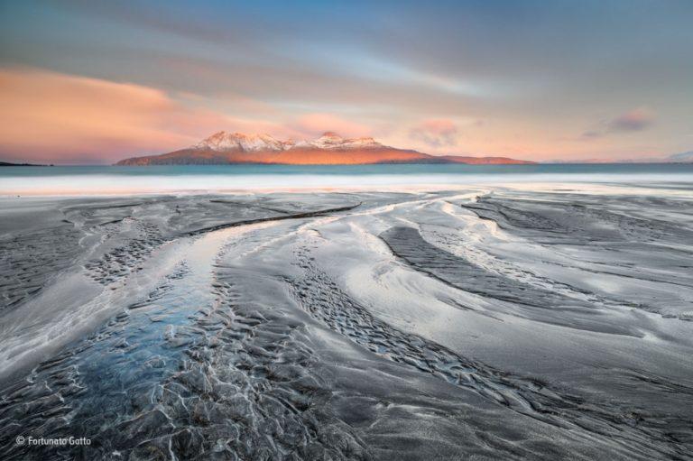Scatti di natura incontaminata: <br>le foto premiate al Wildlife <br>Photographer of the Year