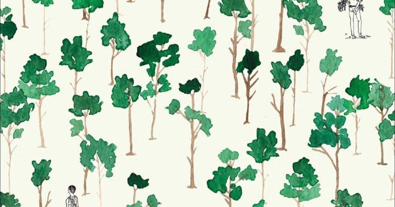 «Faremo foresta»: vite secche che germogliano