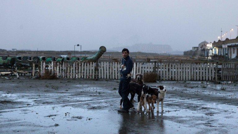 «Dogman» selezionato per gli Oscar: cosa significa?