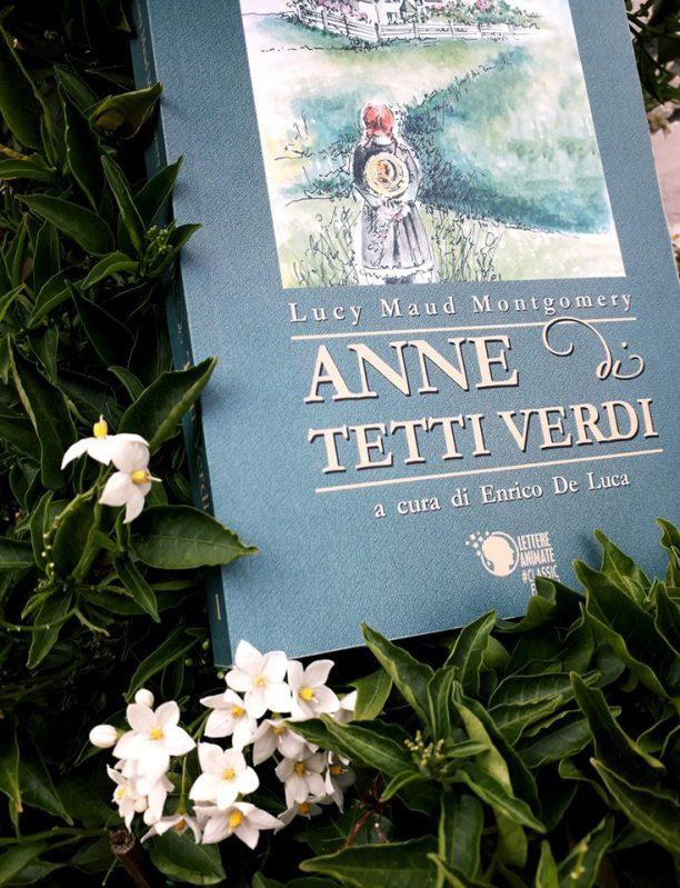 Anne di Tetti Verdi