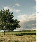 «Soffia il vento». Poesie italo-catalane di Fabio Strinati